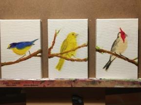 Pássaros set 01
